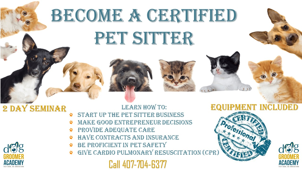 Why Do I Want To Be A Pet Sitter Fundamentals Explained